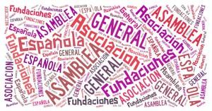 Asamblea General Asociación Española de Fundaciones